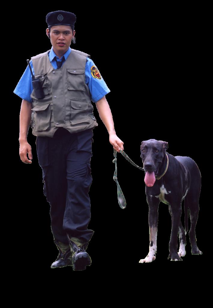 tuyển dụng bảo vệ