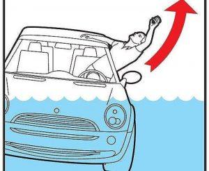 cách thoát hiểm khi ô tô rơi xuống nước